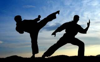 Борцовский бой женщина против мужчины. Единоборки в старину.Начало ХХ столетия