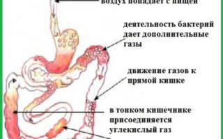Почему слева внизу живота у женщин возникает боль. Покалывание внизу живота – что означает