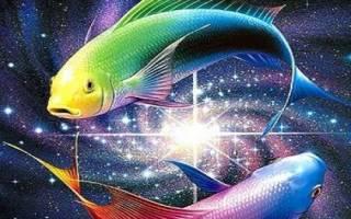 Как влюбить в себя мужчину рыбы. Видео: Как влюбить в себя парня рыбу по гороскопу