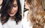 Кого предпочитают мужчины блондинки или брюнетки статистика. Кто лучше — блондинки или брюнетки? Кого выбирают мужчины