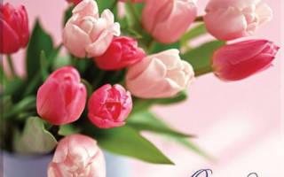 Открытки днем рождения женщине тюльпанами. Открытки цветочных фей. Открытки с тюльпанами