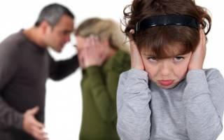 Как производится развод если есть ребенок. Если у супругов есть дети — как проходит процедура развода