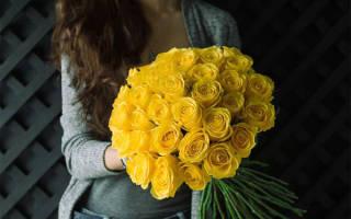 Можно ли дарить девушке желтые розы. К чему дарят желтые розы и что символизируют эти цветы