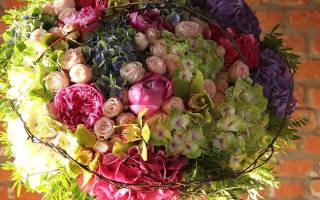 Какой букет лучше подарить директору. Какие цветы подарить руководителю — женщине? Букет шефу — кому какой дарить