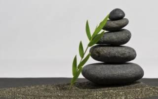 Что такое Кундалини? Какую роль она играет. Кундалини — мистическая энергия, способная полностью изменить жизнь человека