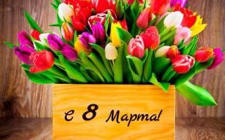 Красивые цветы с 8 марта женщинам. Все лучшее семье