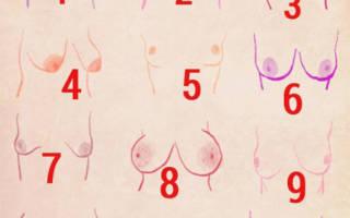 Женская грудь выделяет по форме. Как определить характер женщины по форме ее груди