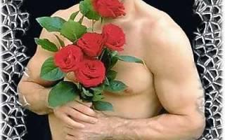 «Цветы мужчин» Какие цветы можно подарить мужчине? Какие цветы подарить мужчине